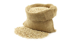Raw organic barley in a burlap bag Stock Photography