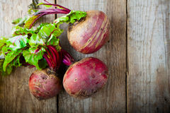 Raw Organic Beets. Fresh organic beets on a wood table Stock Image