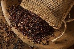 Raw Organic Black Quinoa Royalty Free Stock Images