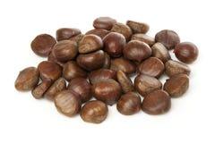 Raw Organic Brown Chestnuts Stock Photos