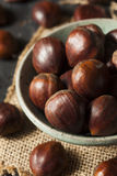 Raw Organic Brown Chestnuts Royalty Free Stock Images