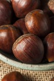 Raw Organic Brown Chestnuts Royalty Free Stock Image