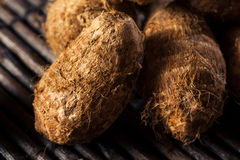Raw Organic Brown Eddoes Royalty Free Stock Photos