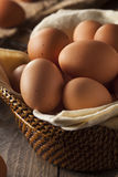 Raw Organic Brown Eggs Royalty Free Stock Photo