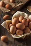Raw Organic Brown Eggs Stock Photography