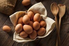 Raw Organic Brown Eggs Royalty Free Stock Photos