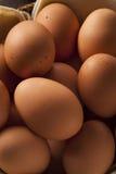 Raw Organic Brown Eggs Stock Photo