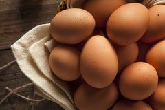 Raw Organic Brown Eggs Stock Photos