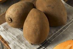 Raw Organic Brown Mamey Fruit Royalty Free Stock Image