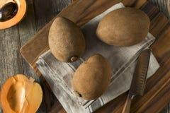 Raw Organic Brown Mamey Fruit Royalty Free Stock Photography