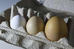 Raw organic brown and white eggs over white background. Alone among strangers, the concept of inequality and racism. Raw organic rustic brown and white eggs over Royalty Free Stock Photo
