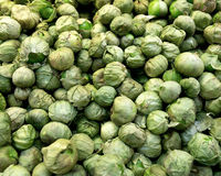 Raw organic brussels sprouts. In local farmers market store Royalty Free Stock Image