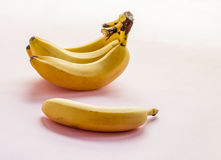 Raw Organic Bunch of Bananas Royalty Free Stock Photography
