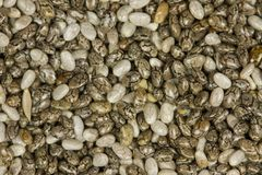 Raw Organic Chia Seeds. Top view of chia seeds. Can be used as background. The people of the ancient Aztec and Incan empires revered chia seeds as viral stock photography