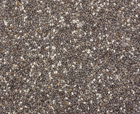 Raw organic chia seeds Stock Image
