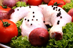 Raw organic chicken drumstick Royalty Free Stock Photos