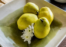 Raw Organic Chinese pears Yellow Asian Apple Pears in a dish Royalty Free Stock Image