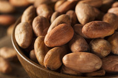 Raw Organic Cocoa Beans Stock Photos