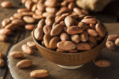 Raw Organic Cocoa Beans Stock Images