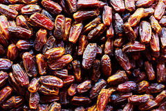 Raw Organic Dates Royalty Free Stock Images