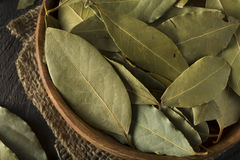 Raw Organic Dry Bay Leaves Stock Images
