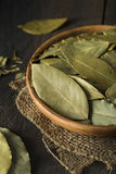 Raw Organic Dry Bay Leaves Royalty Free Stock Photography