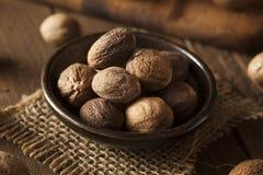 Raw Organic Dry Nutmeg Royalty Free Stock Photography