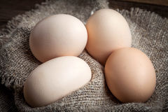 Raw organic farm eggs. Royalty Free Stock Photography