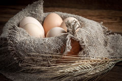 Raw organic farm eggs. Raw organic farm eggs on the old background Stock Photography