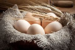 Raw organic farm eggs. Raw organic farm eggs on the old background Stock Photo