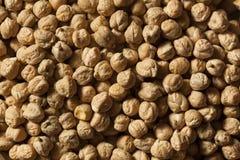 Raw Organic Garbanzo Beans Stock Photo