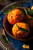 Raw Organic Gold Nugget Mandarin Oranges. Ready to Eat Royalty Free Stock Photography