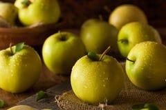 Raw Organic Golden Delicious Apples Stock Photo