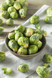 Raw Organic Green Brussel Sprouts. Ready to Cook With Stock Images