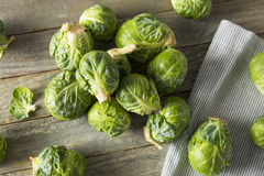 Raw Organic Green Brussel Sprouts. Ready to Cook With Royalty Free Stock Photo