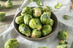 Raw Organic Green Brussel Sprouts. Ready to Cook With Stock Photo