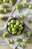 Raw Organic Green Brussel Sprouts. Ready to Cook With Stock Image