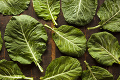 Raw Organic Green Collard Greens Royalty Free Stock Images