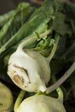 Raw Organic Green Kohlrabi. In a Bunch Royalty Free Stock Photo