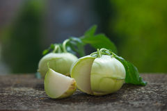 Raw Organic Green Kohlrabi. On wooden board. Outdoor image, blurred background Stock Photography