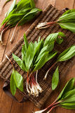 Raw Organic Green Ramps. Ready to Cook With Stock Photos