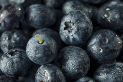 Raw Organic Healthy Blueberries. In a Bowl Royalty Free Stock Photos