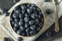 Raw Organic Healthy Blueberries. In a Bowl Royalty Free Stock Image