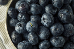 Raw Organic Healthy Blueberries. In a Bowl Stock Images
