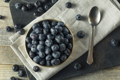 Raw Organic Healthy Blueberries. In a Bowl Royalty Free Stock Images