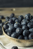 Raw Organic Healthy Blueberries. In a Bowl Stock Image