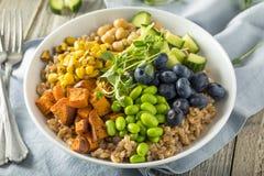 Raw Organic Healthy Buddha Bowl. With Farro Spinach Edamame and Cucumber Stock Photos