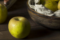 Raw Organic Heirloom Golden Russet Apples Royalty Free Stock Photos