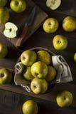 Raw Organic Heirloom Golden Russet Apples Royalty Free Stock Image