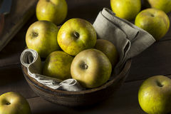 Raw Organic Heirloom Golden Russet Apples Stock Images